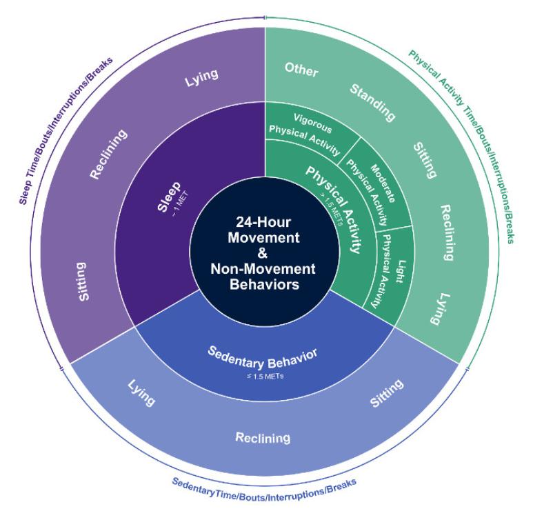 Sedentary Behavior Terminology